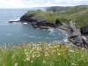 From the top of Tintagel